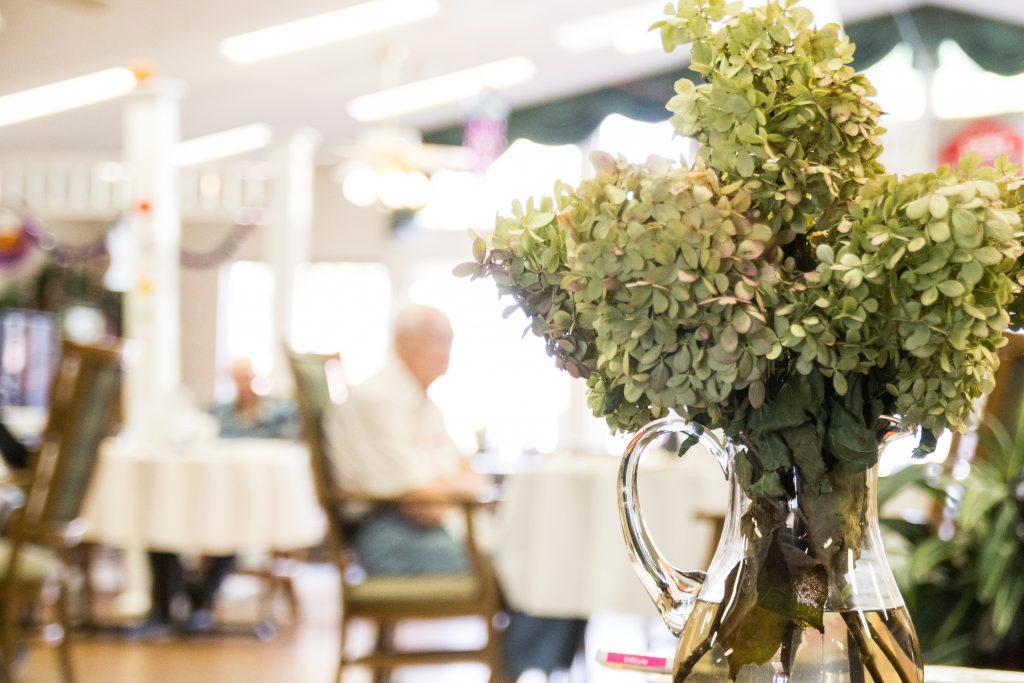 closeup of hydrangea in a vase
