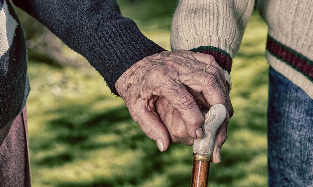 holidays and elders