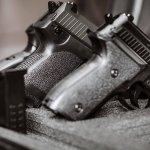 three guns in a case